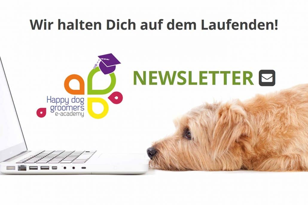 Newsletter Happy Dog Groomers e-Academy